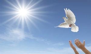 Ελευθερία : Αλήθεια ή αυταπάτη;