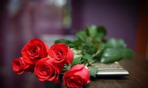 Σταύρωση και Ανάσταση με ένα τριαντάφυλλο