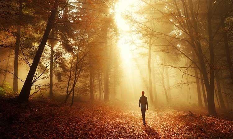 Ζωγράφισε τον Παράδεισο που θέλεις να ζήσεις